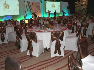 White Chair Covers & Mercury Tie Backs